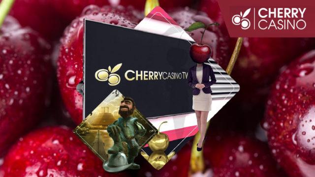 2019年2月7日のチェリーカジノ(CHERRYCASINO)TVボーナス